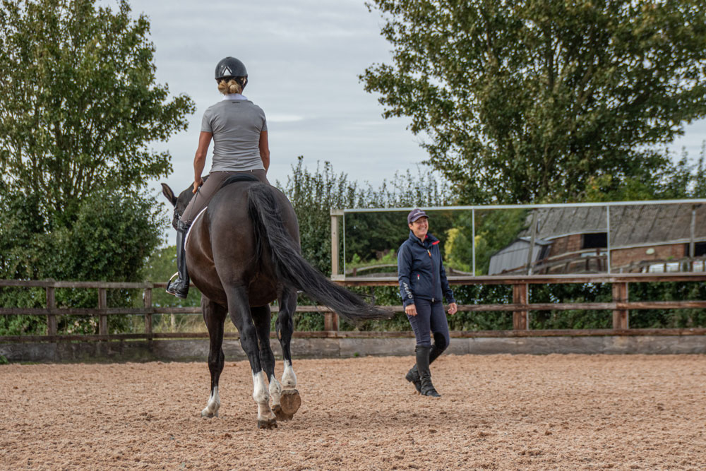 An image of horse training